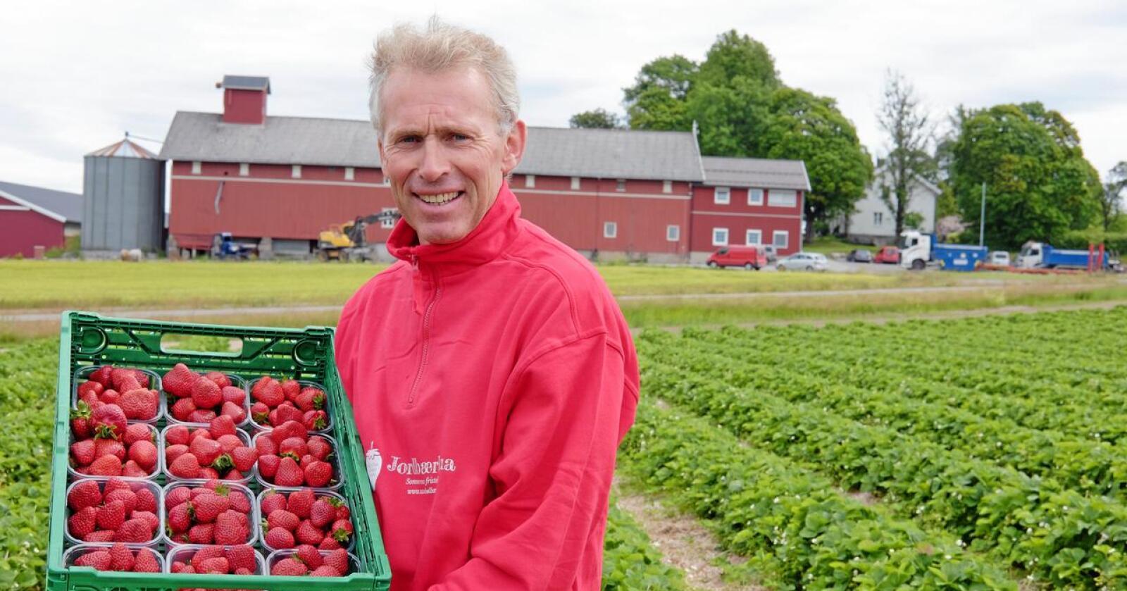 Per Fredrik Saxebøl i Frogn driver med jordbær og korn. Han vurderer å kutte ned på bærarealet hvis han ikke får bekreftet at litauerne slipper inn. (Foto: Siri Elise Dybdal))