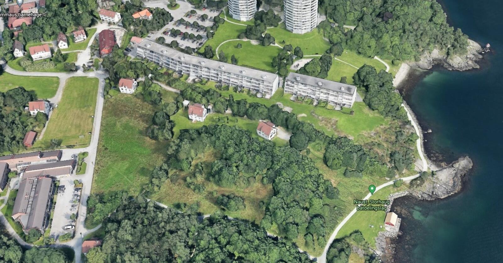 Byjord: På Storhaug aust i Stavanger ligg eit dels gjengrodd friområde som kommunen har eigd sidan 80-talet. I statistikken står det oppført som nær 15 dekar jordbruksjord. Landbrukssjefen seier driveplikta ikkje kan praktiserast på slike grøntareal midt i byen. Han ber om at systemet blir endra. Foto: Google Earth