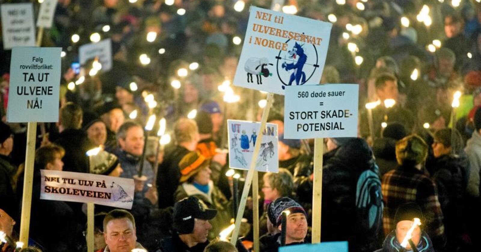 Ulvemotstandere i fakkeltog mot regjeringens ulvepolitikk i 2017. I 2019 er det på'n igjen. Foto: Vegard Wivestad Grøtt / NTB Scanpix