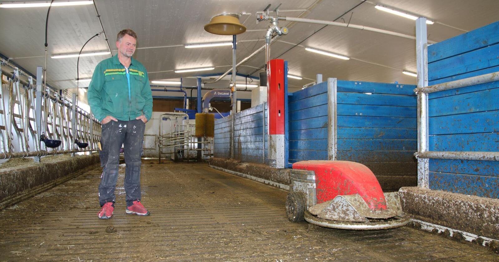I mai flyttet kyrne til Leif Sverre Løkken inn i nytt løsdriftsfjøs med skraperobot. Prosjektet var støttet med investeringsmidler fra Innovasjon Norge.