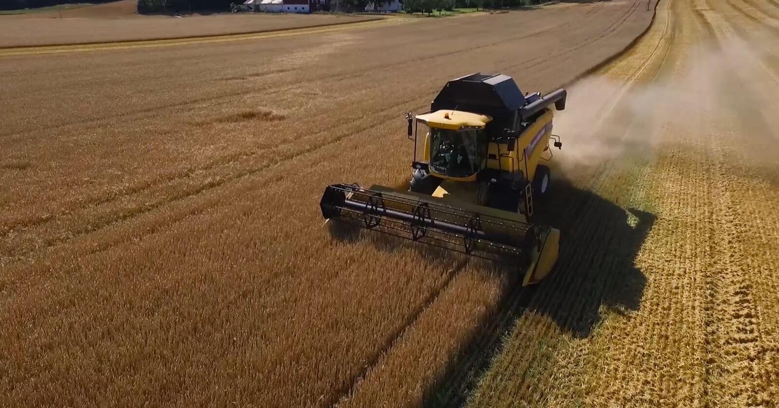 KrF var for beredskapslagring av korn fram til de ble med i Solberg-regjeringen. De aksepterte likevel å droppe dette, mot å få mer bistandspenger. Bildet er fra Borge i Fredrikstad. (Foto: Marcus Gram-Hvidsten)