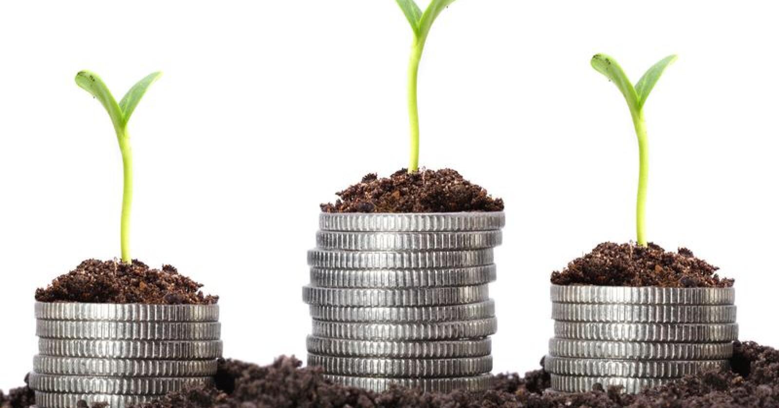 Søkerne vil normalt motta pengene på sin konto innen fredag 21. februar. Foto: Shutterstock