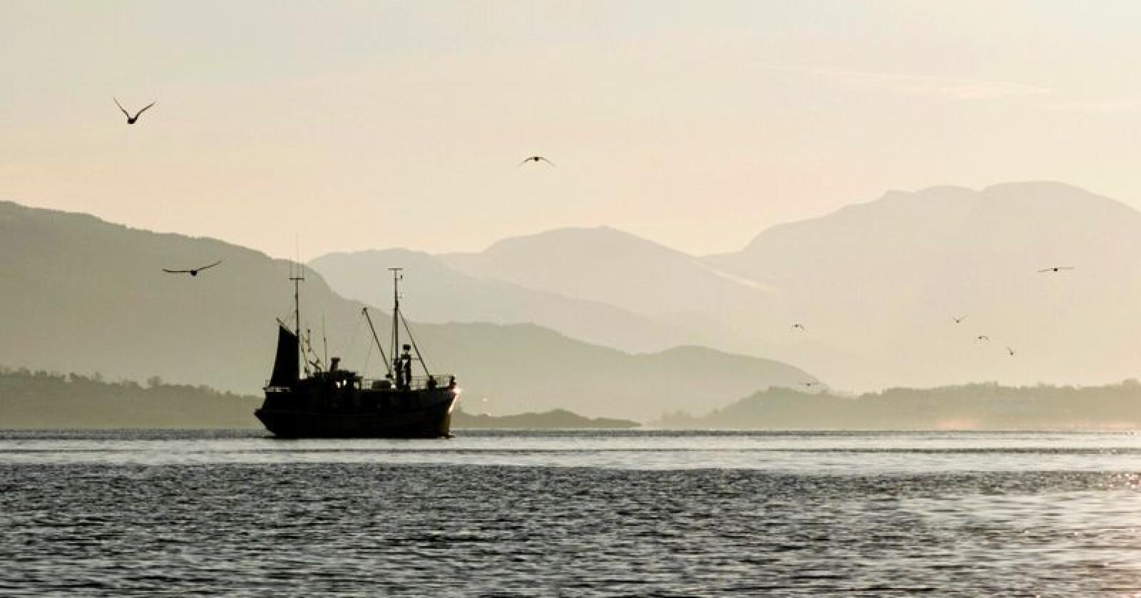 Fiskeri: Stortinget skal i haust vedta nytt kvotesystem. Foto: Paul Kleiven / NTB scanpix