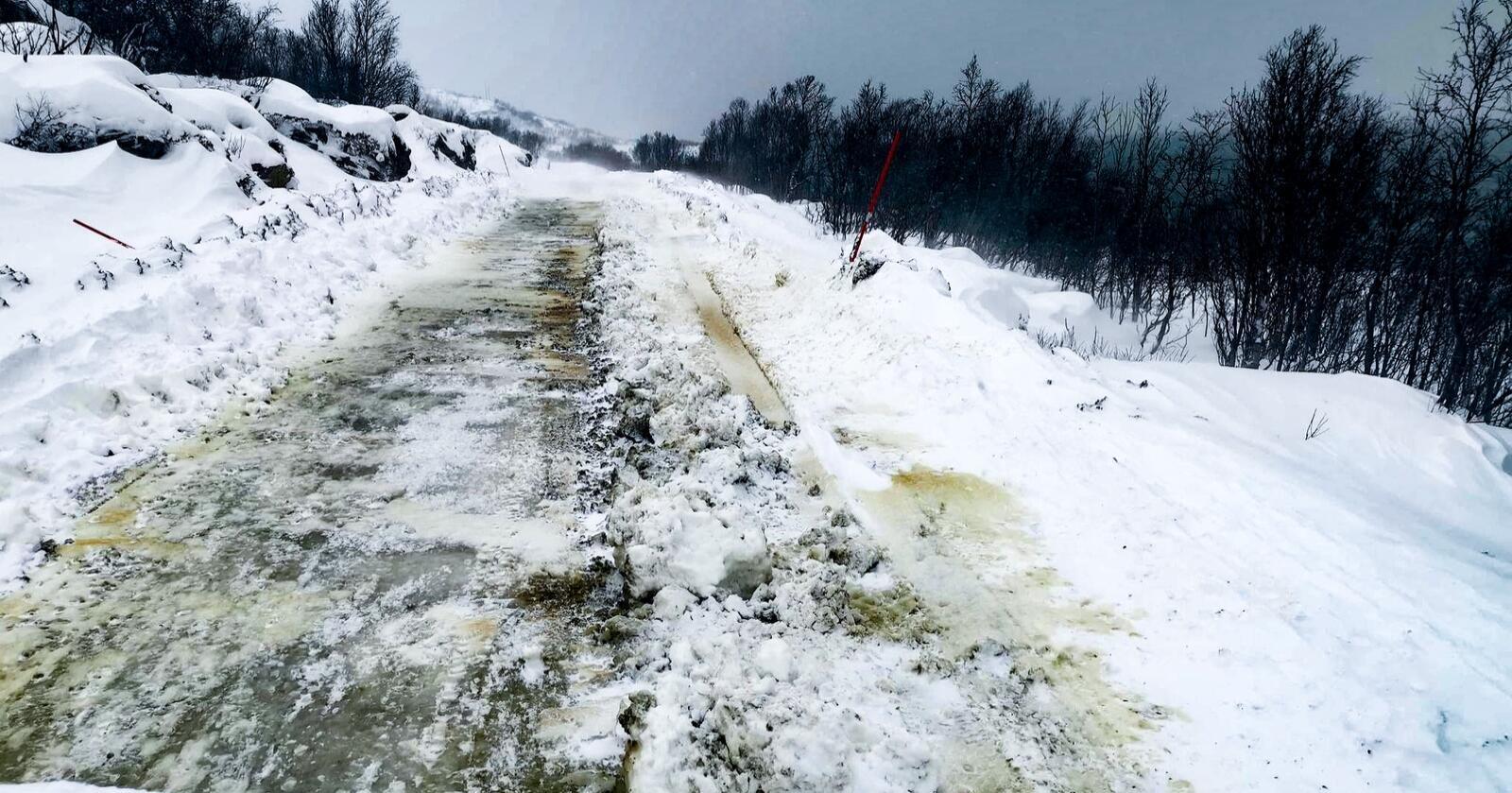 Denne gruslagte fylkesveien på Reinøya i Troms vil koste 40 millioner å asfaltere. Det er 40 prosent av hele Troms sitt veivedlikeholdsbudsjett. Foto: Elisabeth Johansen