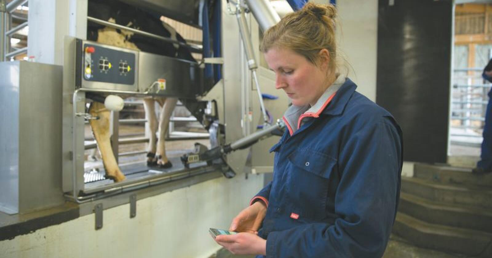 DeLaval sin nye robot blir første gang vist på Bedre Landbruk, som blir arrangert på Lillestrøm denne helga. Foto: Produsenten