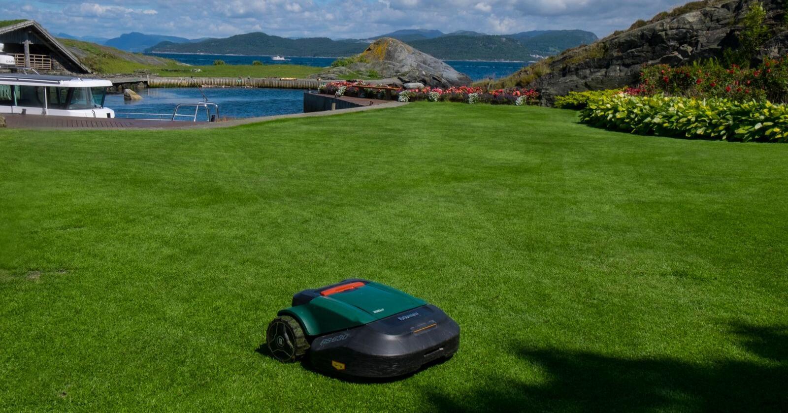 Robotgressklipper slipper du å klippe gresset selv.  Foto: Vidar Ruud / NTB
