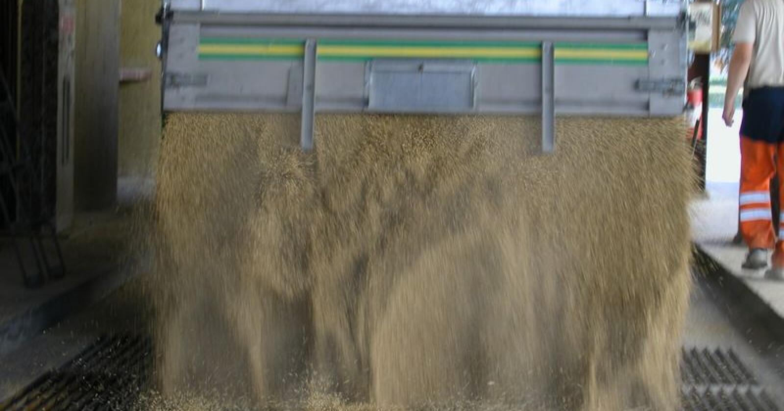Mange kornmottak blir direkte berørt av streiken i Felleskjøpet. (Arkivfoto)