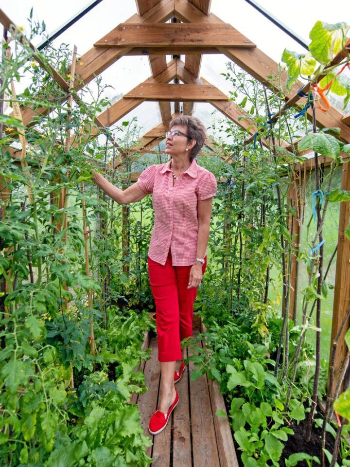 Kathrine Kleveland i et av sine fristeder hjemme i Holmestrand: Drivhuset. Hun sår tomatene som vokser her inne allerede i starten av uke 9, og nå venter hun bare i spenning på at de skal rødme. Foto: Vidar Sandnes