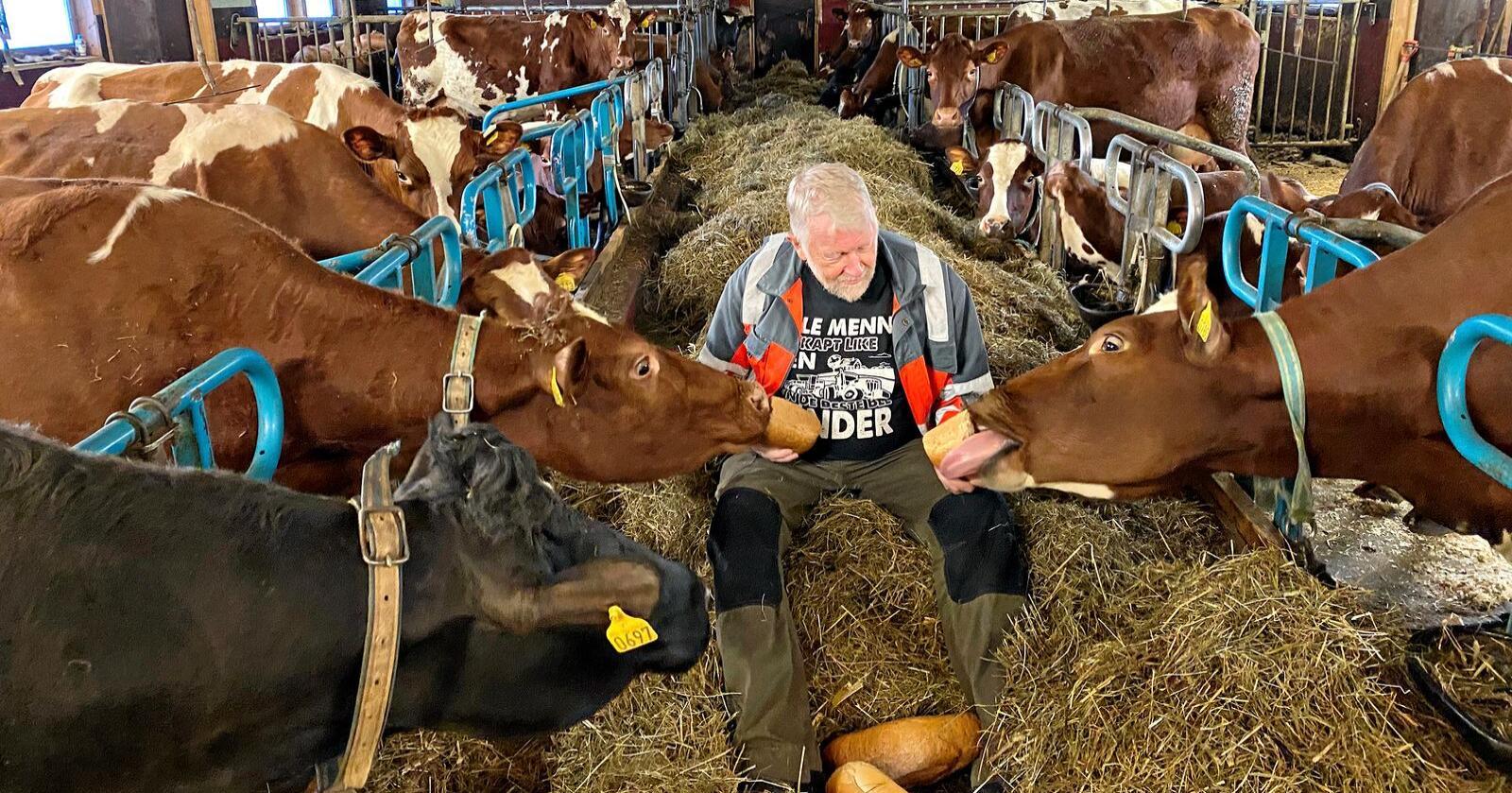 Venteliste: Jens-Olav Løvlid (bildet), Heidi Elvebo og Kai Egil Olseng prøvde alle å kontakte Landbruksdirektoratet like etter klokka 12 torsdag 2. januar, fordi de ikke fikk linken til å fungere. Alle havnet på venteliste. (Foto: Privat)