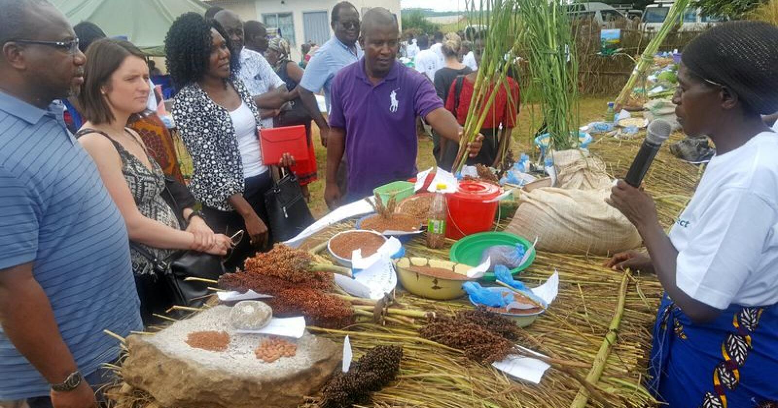 Utstilling: Statssekretær Hanne Maren Blåfjelldal i Landbruks- og matdepartementet deltok på en såvareutstilling i Malawi. Foto: Landbruks- og matdepartementet