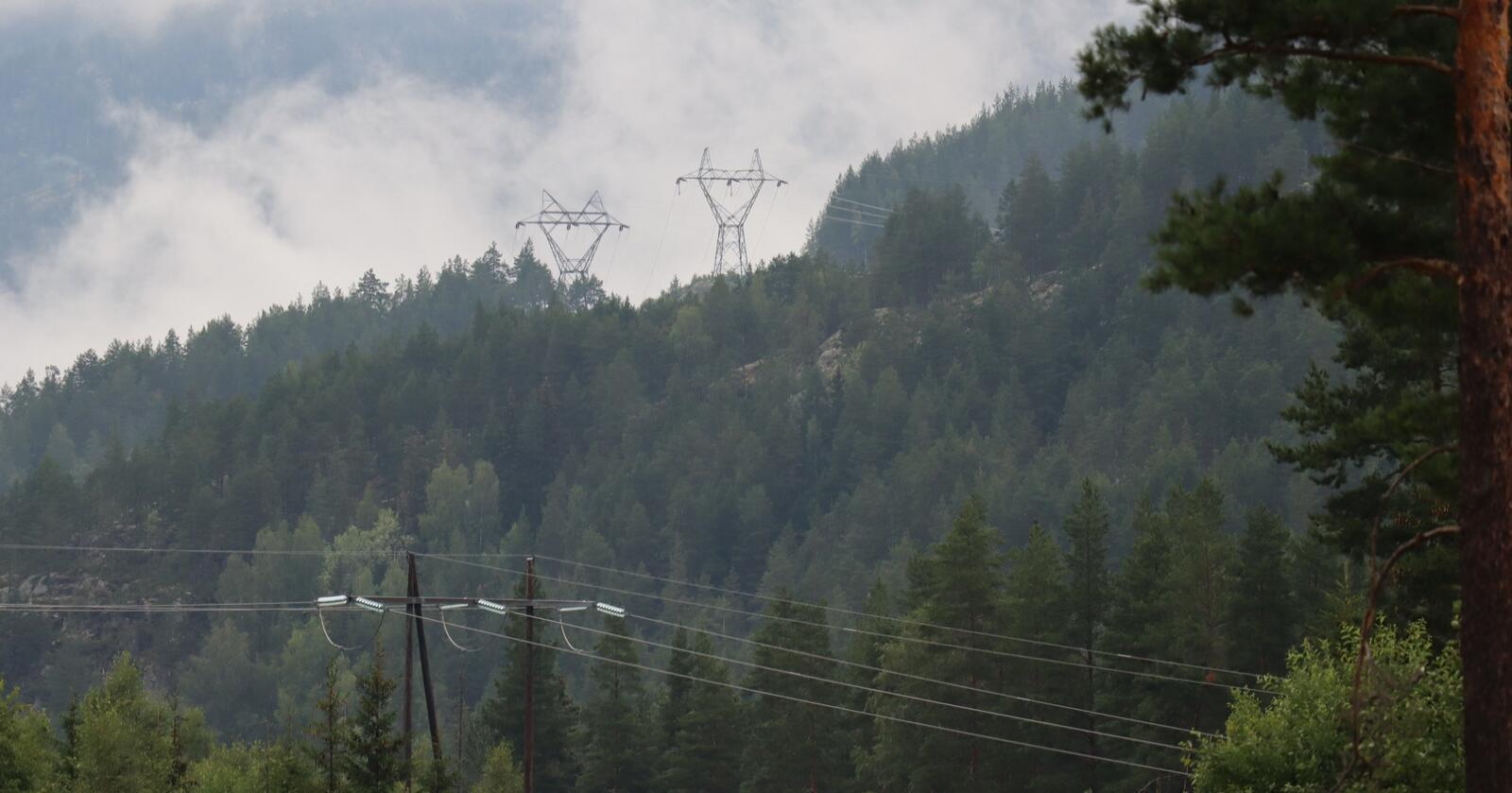 En må tilbake til vinteren 2010 for å finne enkeltmåneder med høyere strømpris enn det Sør-Norge vil få i juli 2021. Foto: Janne Grete Aspen