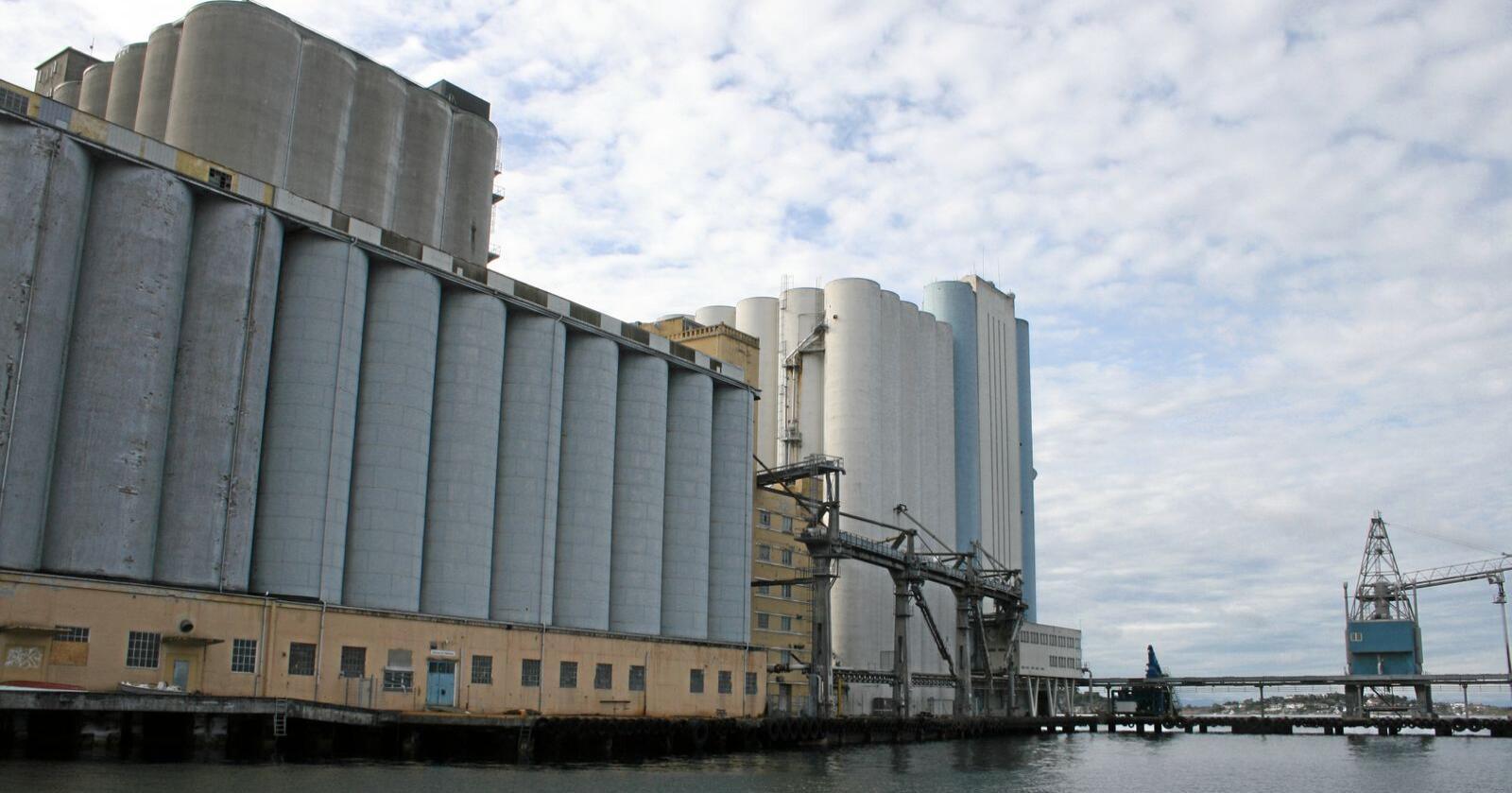 Korngigant: Stavanger Havnesilo, som er dei to bakre kvite og grå silokroppane på fotoet, er Nord-Europas største kornlager. Nå kan det tidlegare beredskapslager for korn bli omgjort til bustader. Siloane framme til venstre er ikkje ein del av anlegget og er ikkje i bruk. Foto: Bjarne Bekkeheien Aase