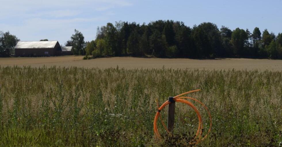 Mange kommuner og fylkeskommuner gir allerede tilskudd til ulønnssomme utbygginger av høyhastighets bredbånd, men det går likevel for sakte, mener KS. Foto: Mariann Tvete