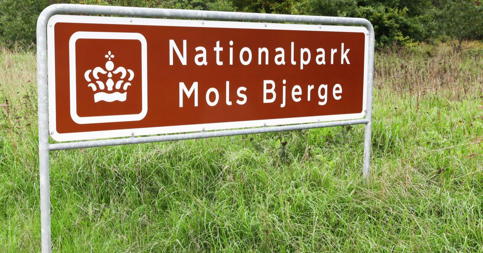 I denne nasjonalparken har det statlige direktoratet ansvar, likevel døde flere kyr av sult. Foto: Mostphotos