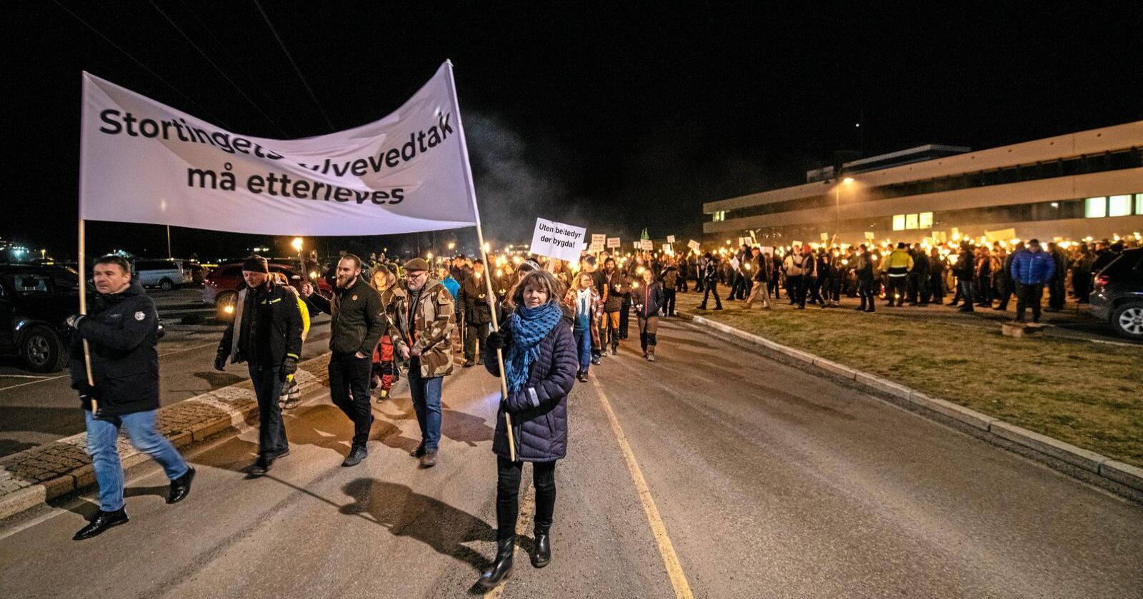 Onsdag demonstrerte 1500 mot vedtaket om å ikke felle ulvene i revirene i Mangen og Rømskog. Foto: Vidar Sandnes