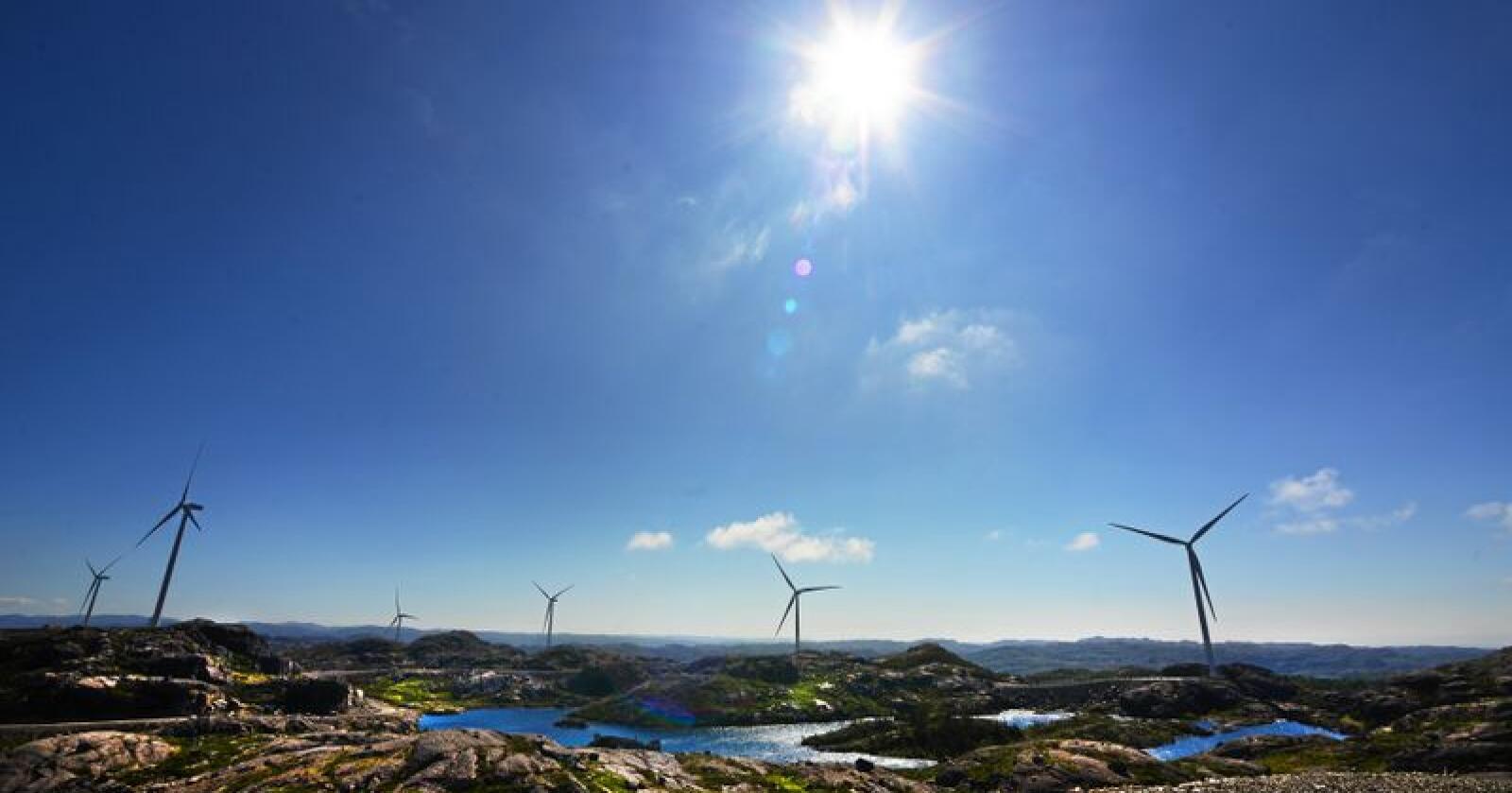 Opprinnelsesgarantier gjør at en kan betale for å sikre at det blir produsert like mye fornybar energi som en selv kjøper. Foto: Siri Juell Rasmussen