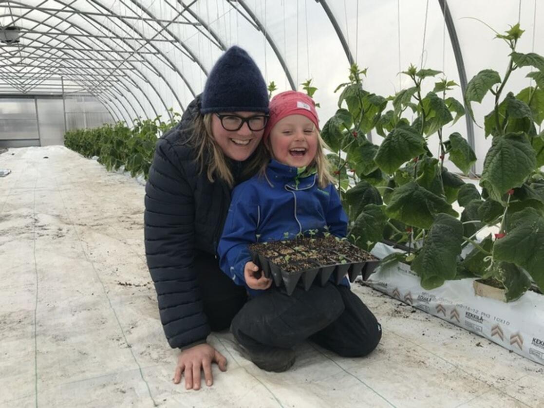 TUSENVIS: I drivhuset hos grøntprodusent Louise Gjør og dattera Mari Tyriberget Gjør klargjøres nå over 9000 grønnsaksplanter til alle barnehagene i Innlandet. Foto: Privat.