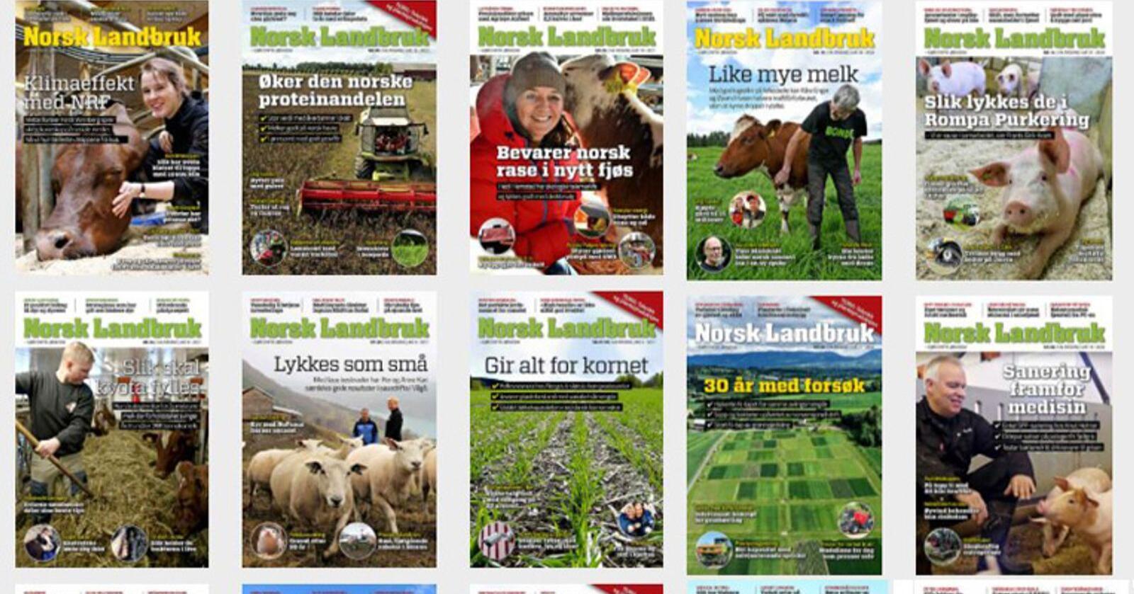 Digital tilgang: Har du et abonnement på Norsk Landbruk kan du lese alt innhold digitalt, enten på nettsidene, som e-avis eller i Norsk Landbruk-appen for Iphone og Android.
