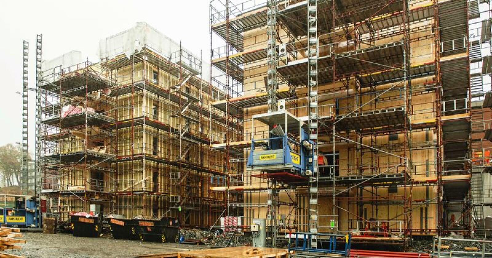 De åtte nye blokkene skal til sammen romme 795 hybelenheter. Bildet er fra tidligere bygging av studenthybler i massivtre ved NMBU. Foto: Bonsak Hammeraas