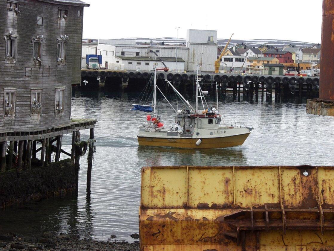 Privatisert: Fiskekvoter og petroleumsiver skader vårt felles hav, skriver kronikøren. Foto: Cathrine Paus
