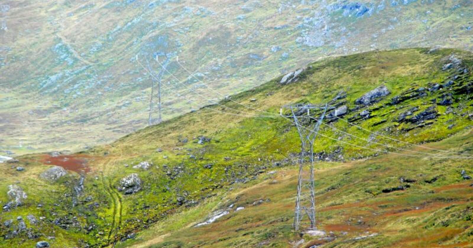 I Norge er strømnettet det samme. Selv om du betaler for «grønn strøm», får du samme strøm som dem som ikke betaler for det. Foto: Lars Bilit Hagen