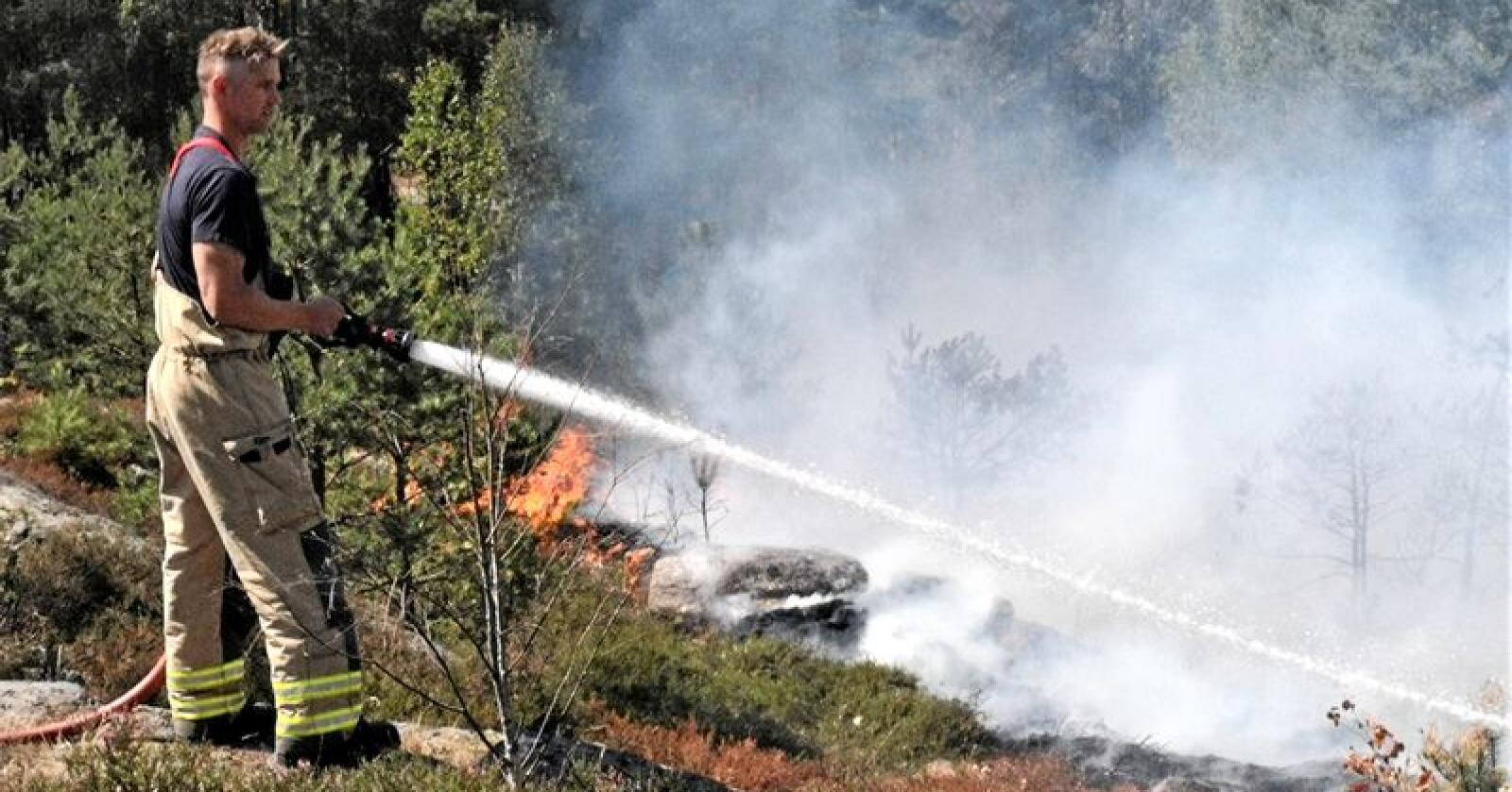 Skogbranner kan lett unngås dersom man følger reglene. Illustrasjonsfoto: Jon-Fredrik Klausen