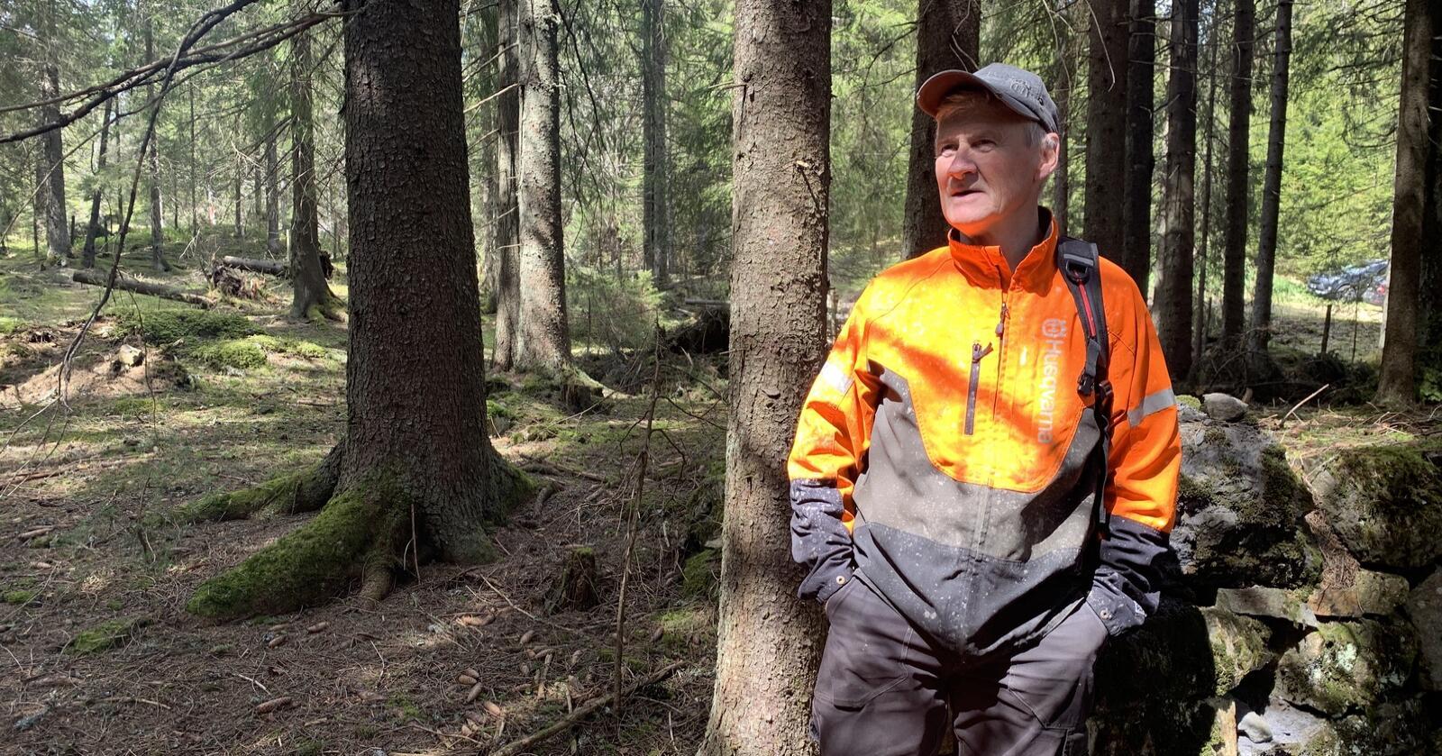 – Når det gjelder tømmer, synes jeg det er ille at en så liten andel fortsatt går tilbake til skogeieren, sier bonde og skogeier Olaf Godli. Foto: Andrea Sørøy
