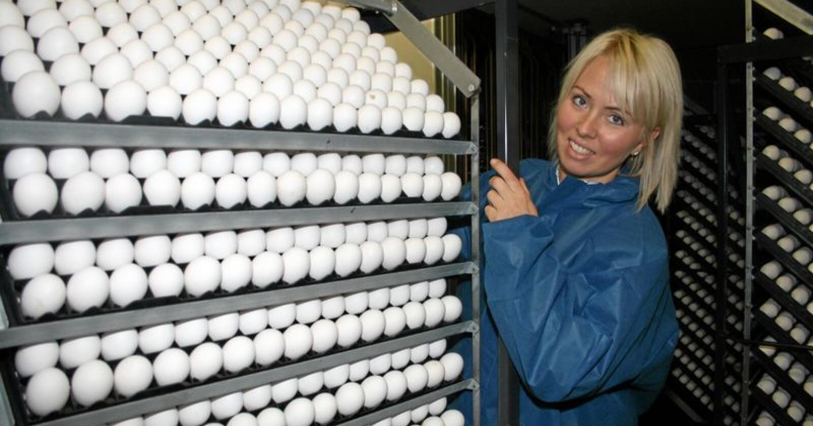 Overskot: Tone Steinsland, nestleiar i Norsk Fjørfelag, vil ha nye reguleringsverktøy for å få bukt med overproduksjonen av egg. Foto: Bjarne Bekkeheien Aase