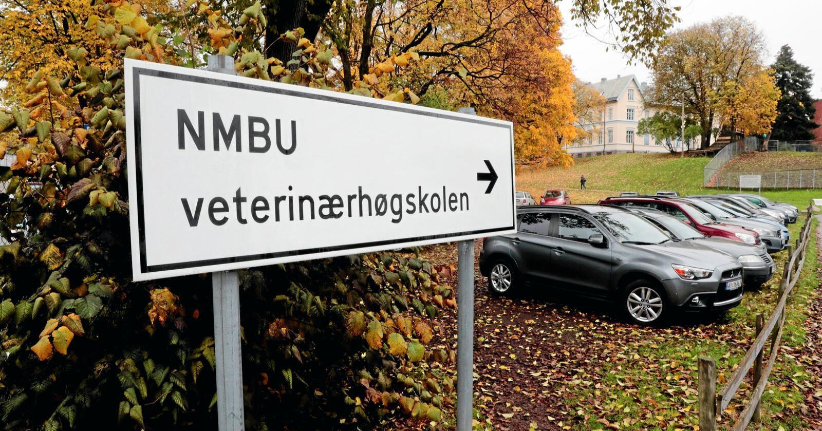 Antallet søkere til NMBU var i år rekordhøyt. Foto: Lise Åserud / NTB scanpix