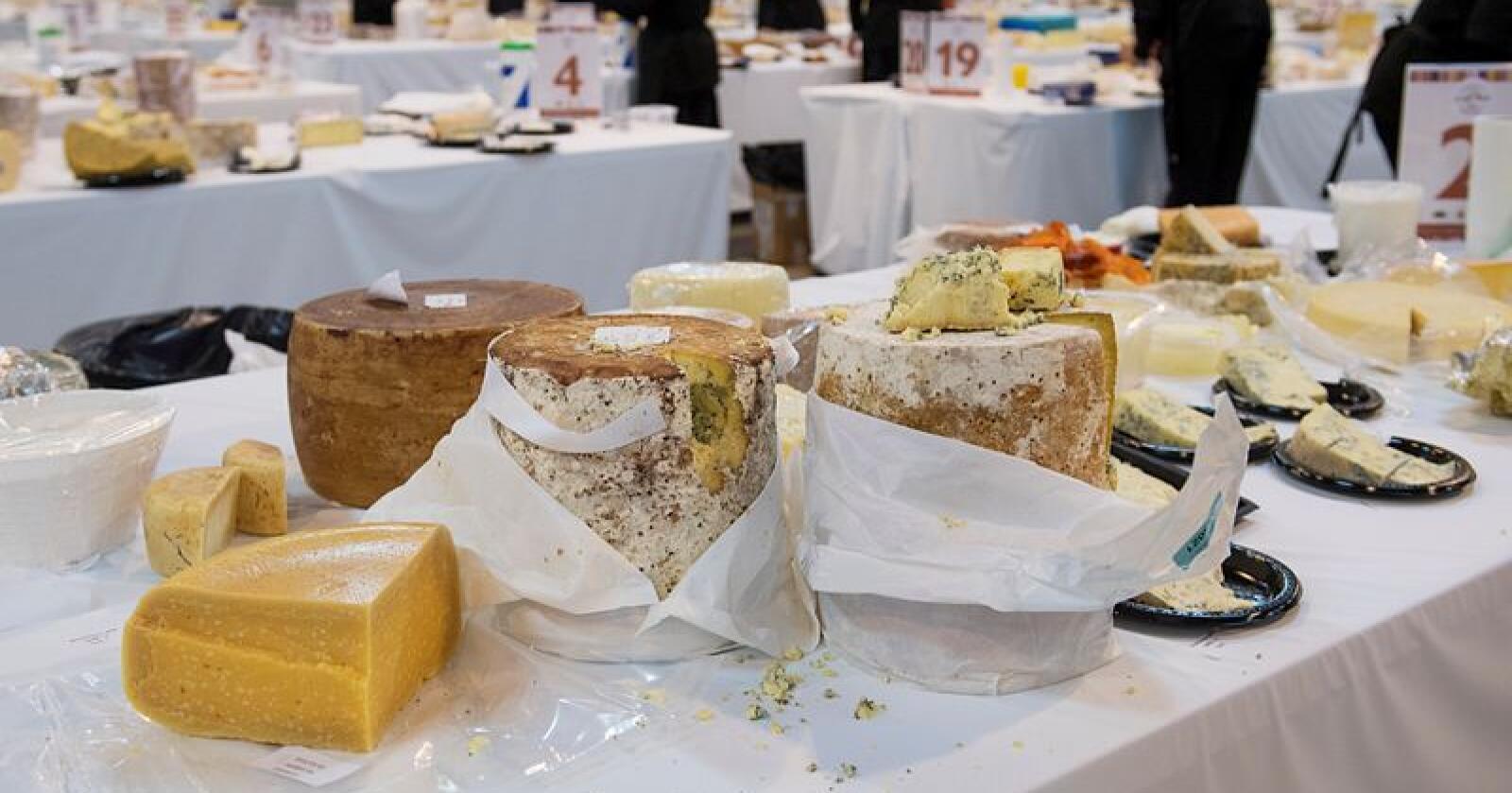World Cheese Awards, verdensmesterskapet for beste oster, i  Dovregubbens hall i Bergen fredag. Foto: NTB scanpix