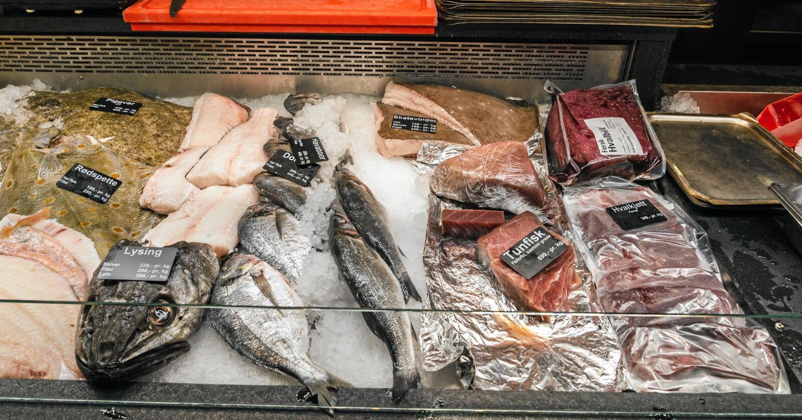 Hvert år fanger norske fiskere 2,6 millioner tonn villfanget sjømat som ikke har smakt et gram soya, og produserer vel 400.000 tonn kjøtt, skriver Tom-Christer Nilsen. Foto: Mostphotos
