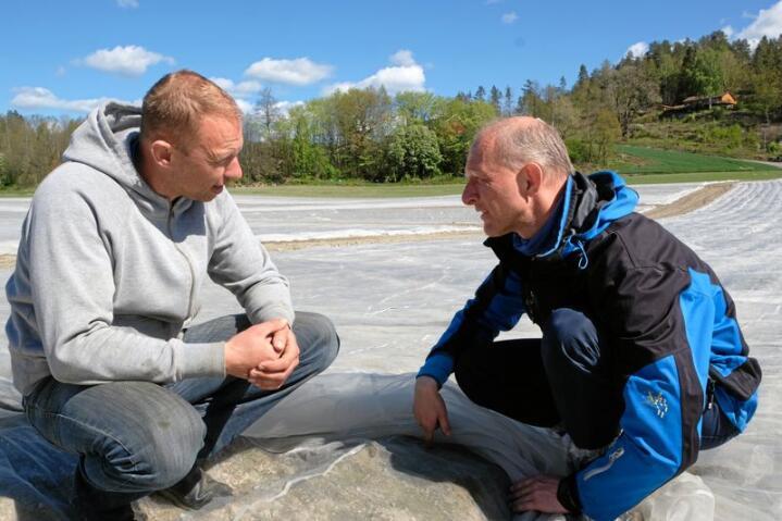 Gulrotprodusent og bonde Sverre Øyen i Lågendalen i prat med NLR-rådgjevar Torgeir Tajet. Foto: Kjersti Kildahl