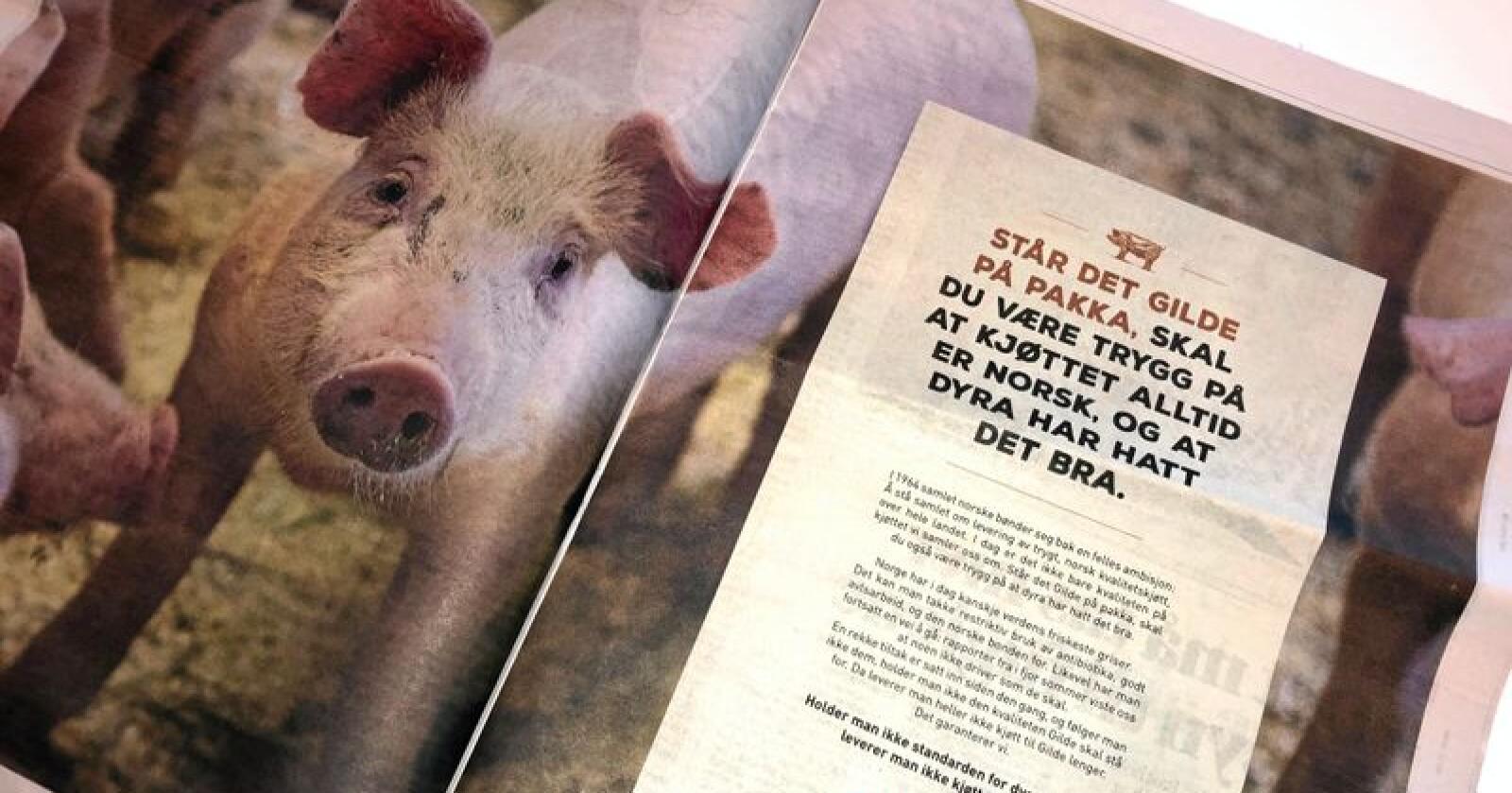 Gilde-annonse dagen etter NRK Brennpunkt-dokumentar om svinenæringa. Foto: Lars Bilit Hagen