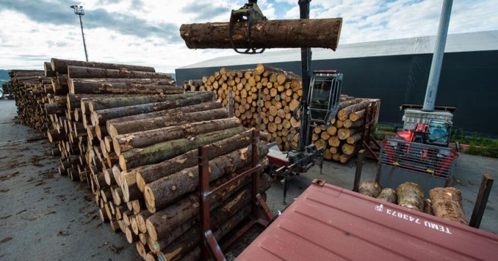 Finland er en stor eksportør av trelast. Det er kun Canada, Russland og Sverige som eksporterer mer trevarer enn Finland. (Foto: Privat)