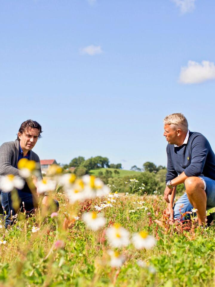 Grønn løsning: – Byene vil bli enormt grønne i fremtiden, tror Bengt Tovslid og Jakob Årsvold, som merker stor interesse for sine produkter som blomsterengen med frø samlet inn av forskere i Nibio. Foto: Solfrid Sande