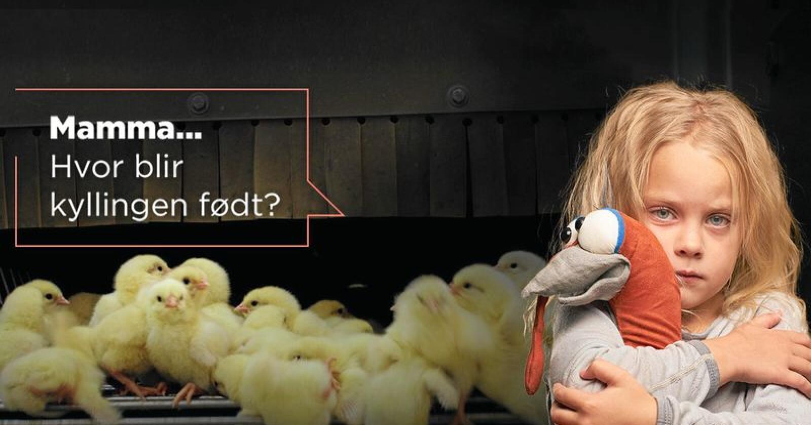 """Kampanje: Dyrevernalliansen kjører for tiden kampanjen """"Ut av mørket"""". Foto: Dyrevernalliansen"""