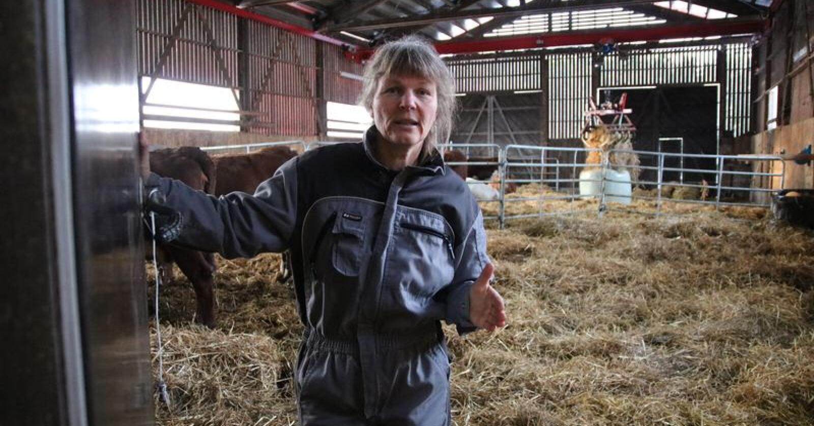 Vanskelig sak: Når viktige elementer i kravet fra jordbruket ikke ble innfridd, hadde vi ikke noe annet valg enn å avslutte forhandlingene, sier Kjersti Hoff. (Foto: Norsk Landbruk)