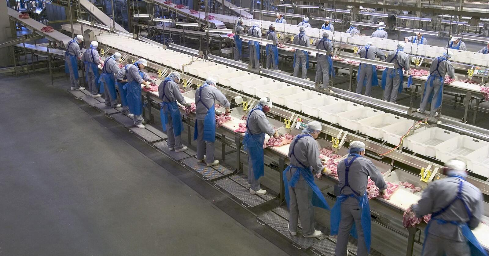 Danish Crowns fabrikk i Horsens skal automatiseres, slik at blant annet pakkingen kan foregå raskere. Bildet er fra da fabrikkslakteriet var nyåpnet i 2005. Foto: Chili foto & arkiv