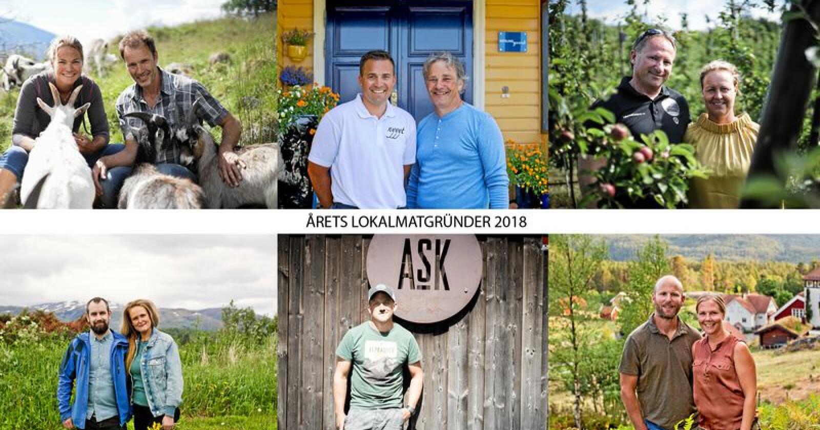 Dette er de seks kandidatene. Fra øverst til venstre: Heidrun, Nyyyt, Dyre gård. Nede fra venstre: Han Sylte, Ask gård og Røyland gård. Foto: Benjamin Hernes Vogl og Solfrid Sande