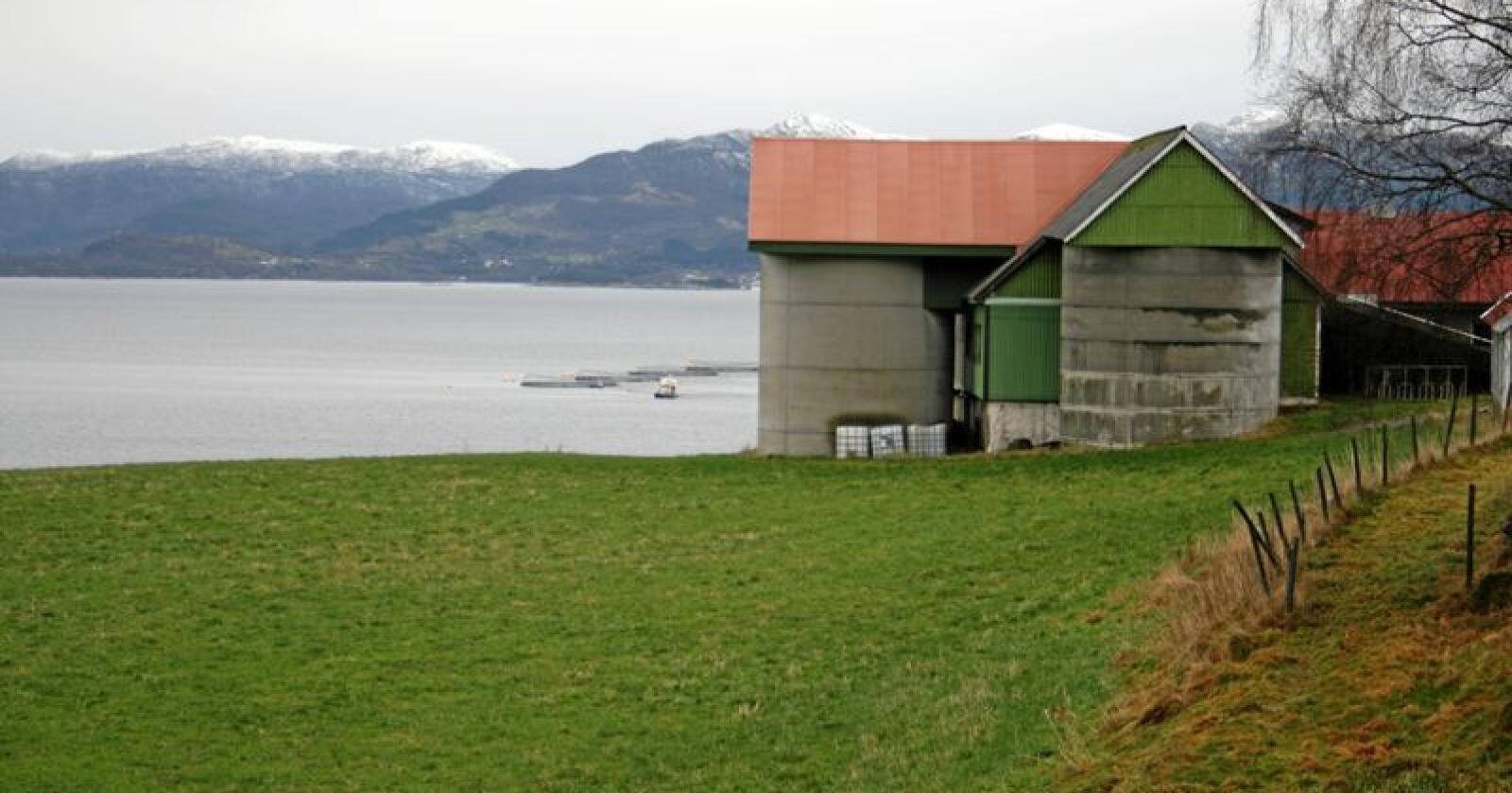 Landsbygda: Ny måling viser at 81 prosent av de spurte på landsbygda sier nei til norsk EU-medlemskap. 40 prosent sier nei til EØS.  Foto: Bjarne Bekkeheien Aase.