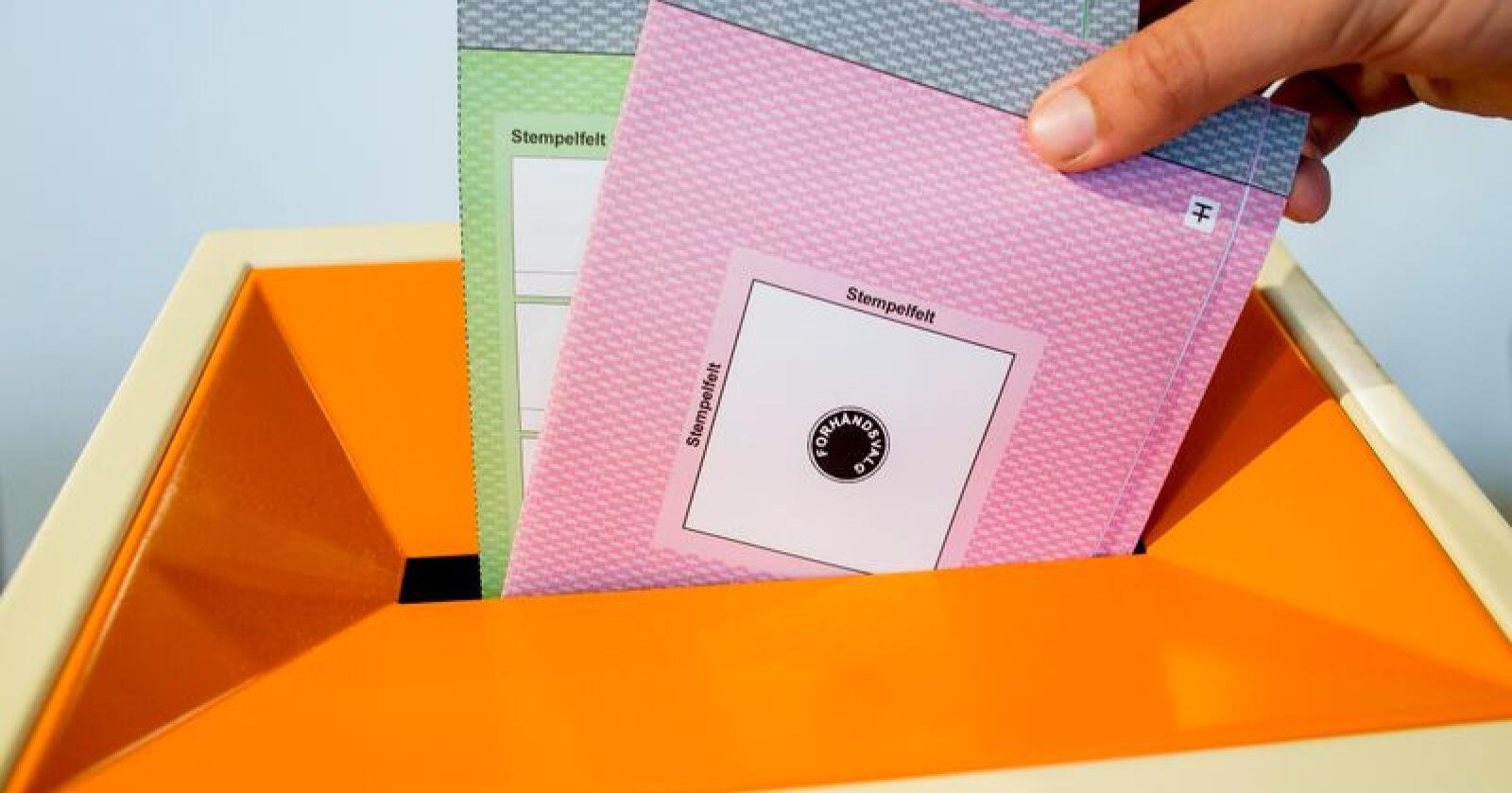 Ved årets lokalvalg har i alt 4.202.016 innbyggere stemmerett. Foto: Vegard Wivestad Grøtt / NTB scanpix