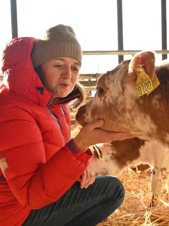 KALVEKOS: Å bruke tid med kalvene, er noe av det triveligste Heidi gjør.
