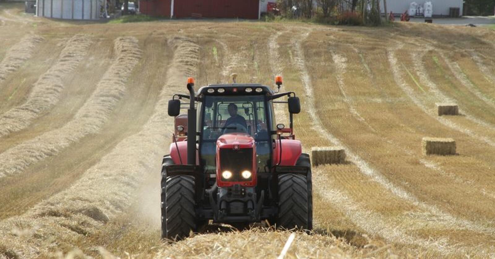 Rapporten viser at vi har et landbruk som ønsker å satse og som har tro på framtida, mener Bente Odlo, landbruksdirektør i Oppland og Haavard Elstrand, landbruksdirektør i Hedmark. Bildet er fra Ringsaker. (Arkivfoto)