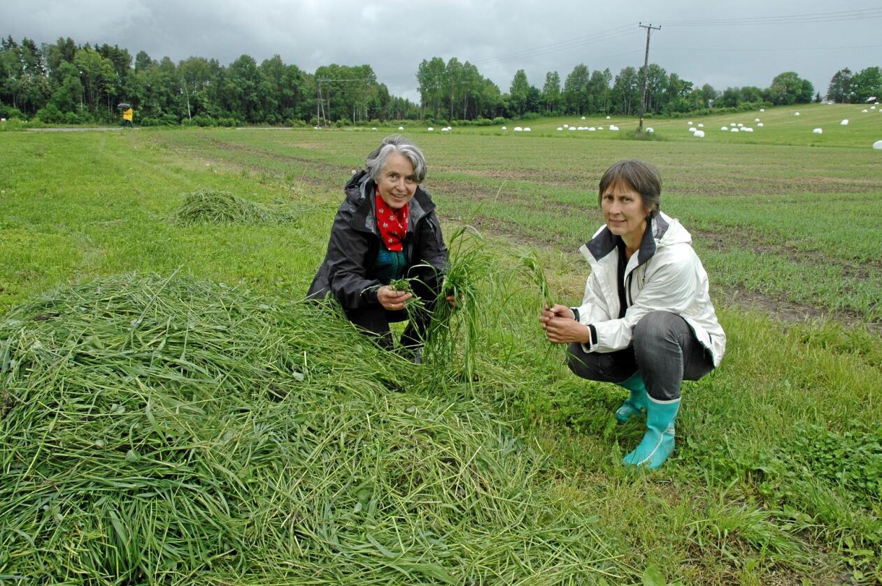 Jordkvalitet: Forsker og prosjektleder Lillian Øygarden fra Nibio/NMBU (til høyre) og forsker Marina Bleken fra NMBU. Foto: Jon Schärer