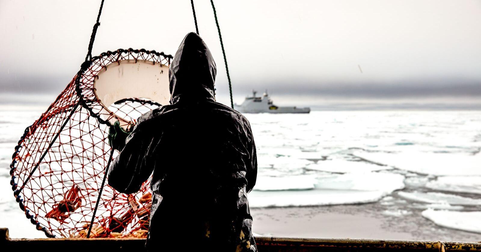 EUs krav til snøkrabbe-kvoter i vernesonen rundt Svalbard oppstod fra et latvisk fiskeriselskap - eid av russiske økonomiske interesser. Om kravet fører frem mener sikkerhetspolitiske eksperter at norsk suverenitetskrav ved Svalbard kan svekkes. Foto: Jonas Selim/Forsvaret
