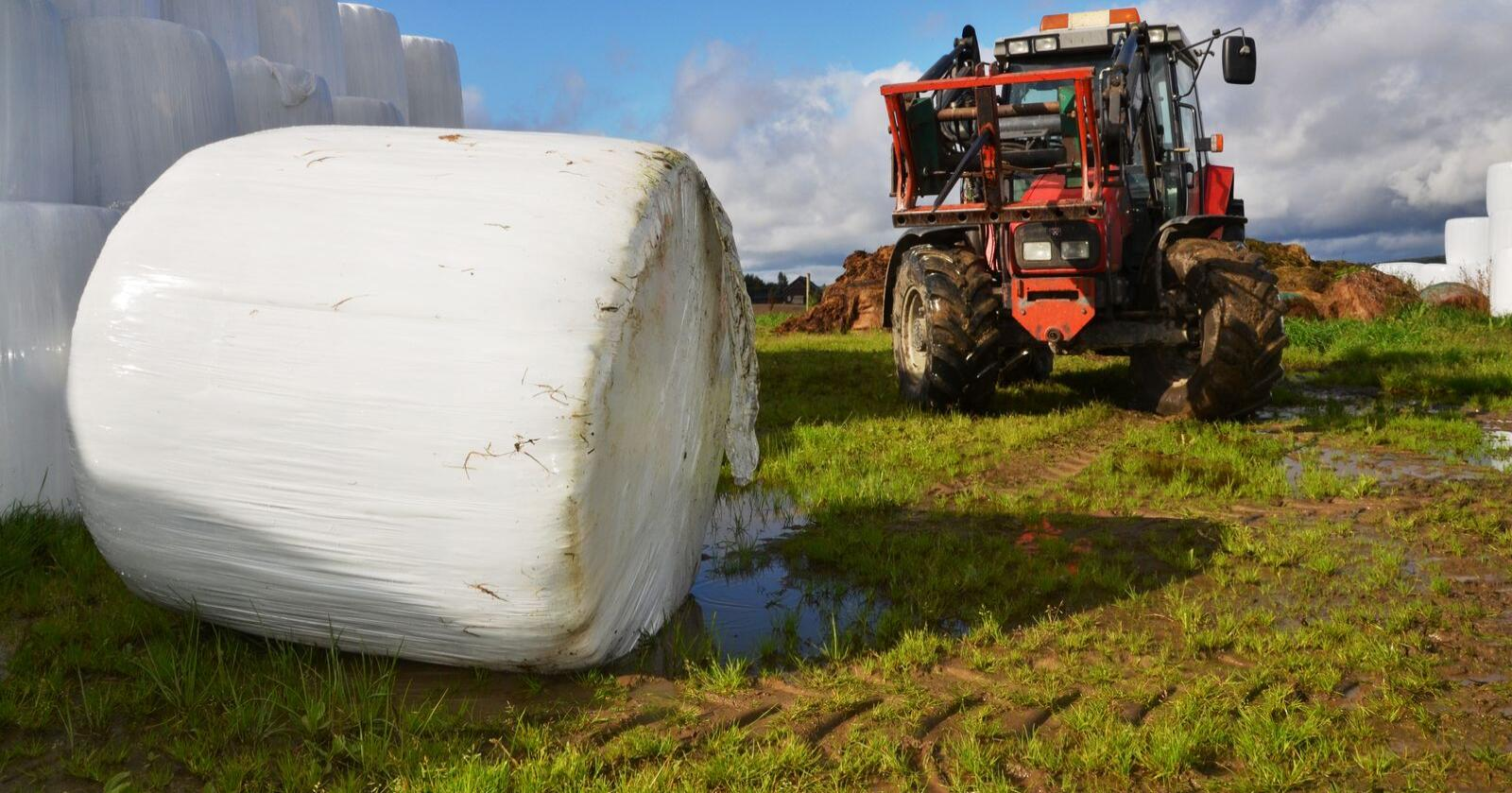Gruppa anbefaler å stimulere til høyere avlinger per dekar og bedre agronomi ved å skjerpe minimumskravene til avling for arealtilskudd grovfôr. (Arkivfoto)