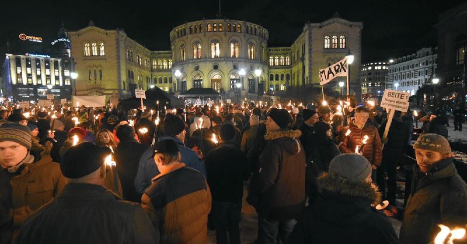 Ulvedemonstrasjon utenfor Stortinget tirsdag kveld. Foto: Vidar Sandnes