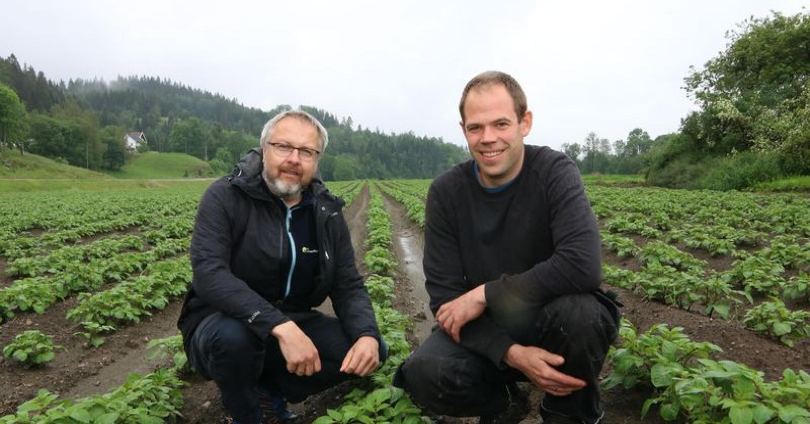 Leif Johan Rugsland har skaffet utstyr for å redusere avdrift av sprøytemidler. Her sammen med rådgiver Sigbjørn Leidal i NLR. (Foto: Øystein Heggdal)