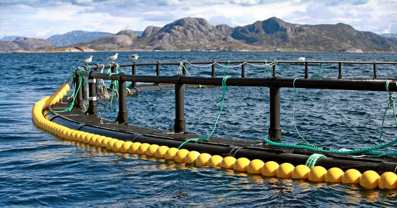 Høyre i Nord-Norge har vist lederskap i en sak som er svært viktig for mange kystkommuner, skriver Bård Ludvig Thorheim. Foto: Mostphotos