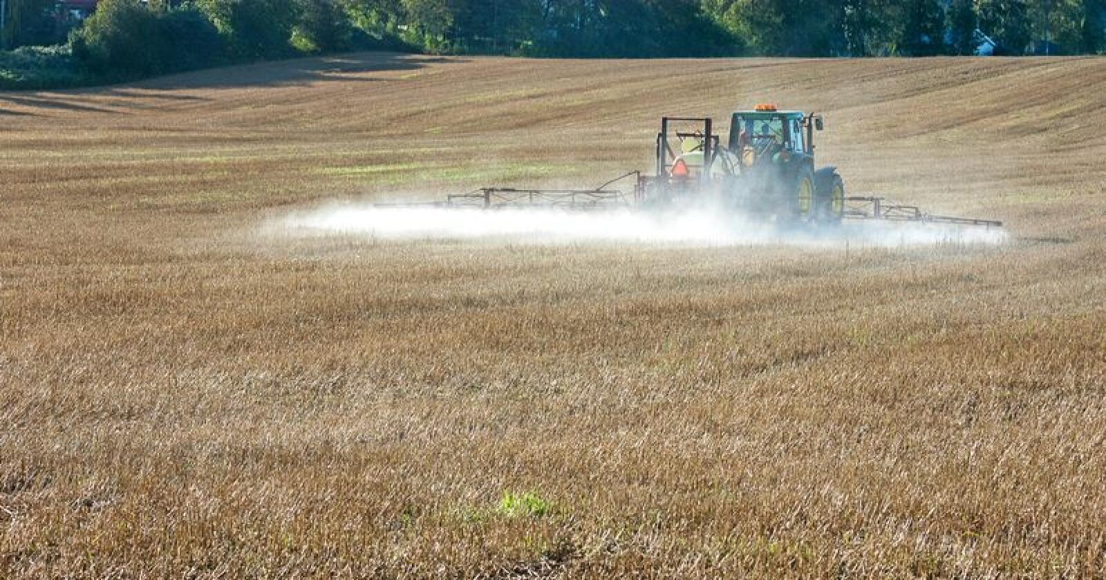 Bruken av plantevernmidler er et mye diskutert tema. I en ny undersøkelse viser det seg at holdningsskapende arbeid og kunnskap hos bønder kan være viktigere for å redusere miljøutslippene enn å for eksempel doble prisen på plantevernmidler. Foto: Erling Fløistad/Nibio